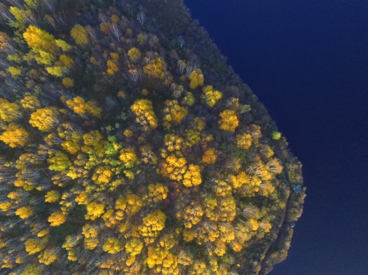 newfoundland drone, aerial photography, aerial videography,