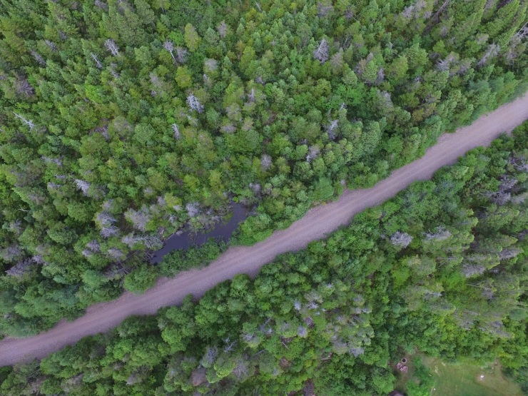 aerial photography, drone, newfoundland