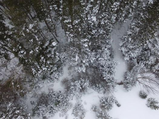 drones newfoundland, drone photography, aerial